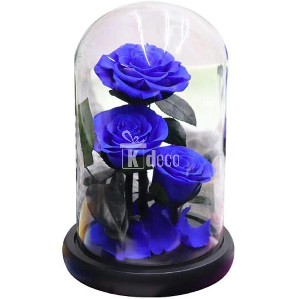 Cand poti oferi trandafiri criogenati?