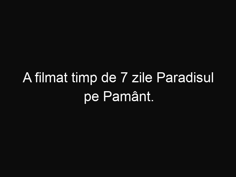 A filmat timp de 7 zile Paradisul pe Pamânt. Ceea ce vezi îți va taia respirația