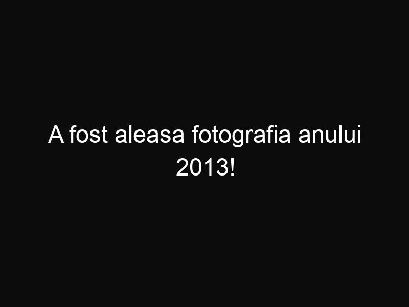A fost aleasa fotografia anului 2013!