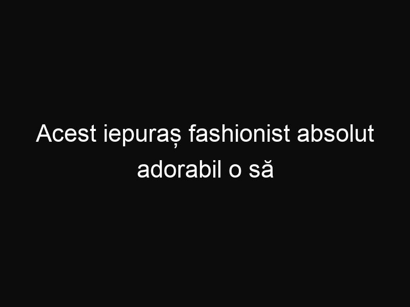 Acest iepuraș fashionist absolut adorabil o să te cucerească