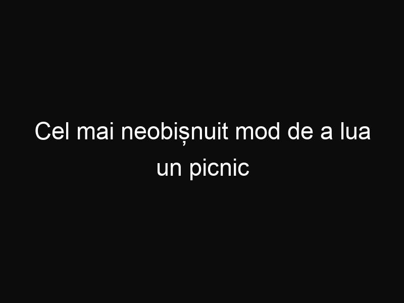 Cel mai neobișnuit mod de a lua un picnic