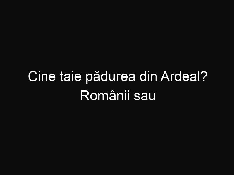 Cine taie pădurea din Ardeal? Românii sau ungurii?