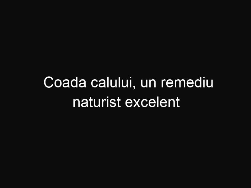 Coada calului, un remediu naturist excelent pentru organismul tău
