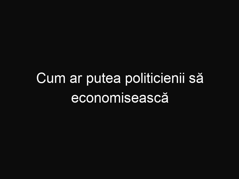 Cum ar putea politicienii să economisească bani? Câteva inițiative, ca cele de mai jos ar costa mai puțin și ar aduce mai mult profit la buget