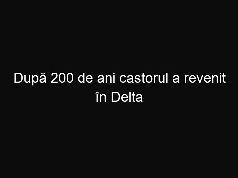 După 200 de ani castorul a revenit în Delta Dunării