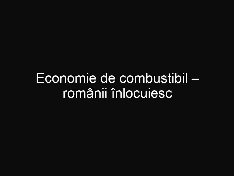 Economie de combustibil – românii înlocuiesc motorina cu ulei de floarea soarelui