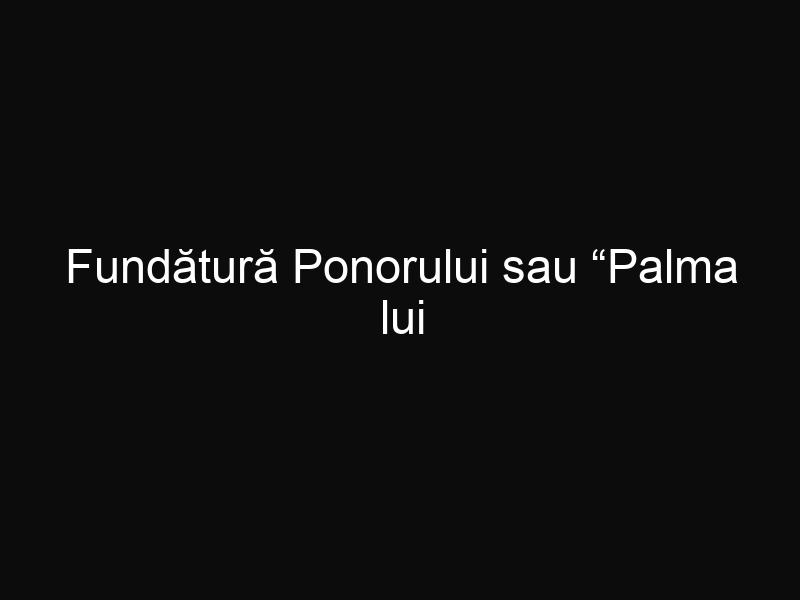 """Fundătură Ponorului sau """"Palma lui Dumnezeu"""" un colţ de rai din România pe care trebuie să îl vezi"""