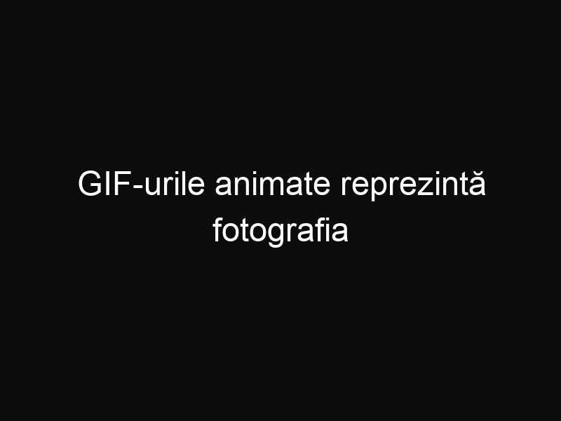 GIF-urile animate reprezintă fotografia viitorului