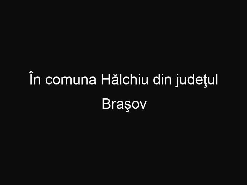 În comuna Hălchiu din judeţul Braşov bătrânii au primit case gratuite. Iată cum a fost posibil!