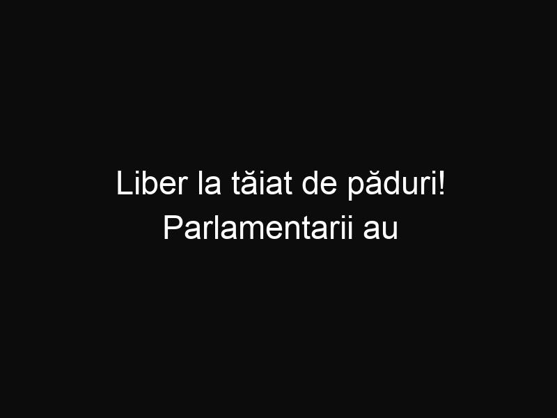 Liber la tăiat de păduri! Parlamentarii au votat modificarea Codului Silvic