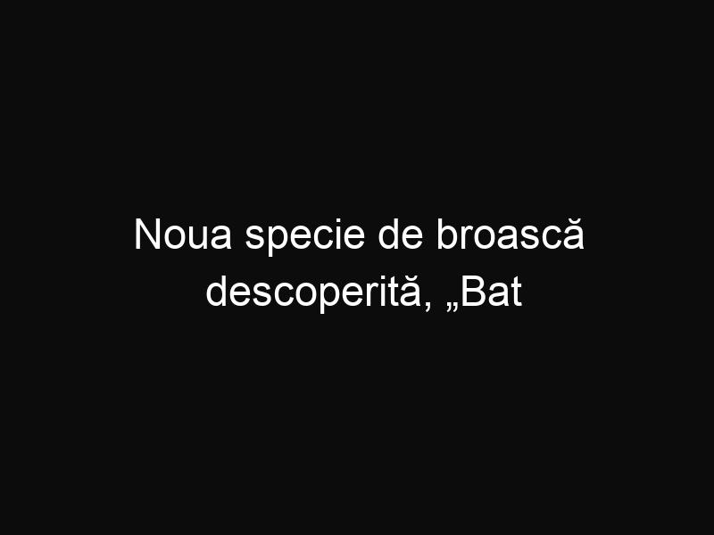 """Noua specie de broască descoperită, """"Bat Frog"""", a fost numită după Ozzy Osbourne"""