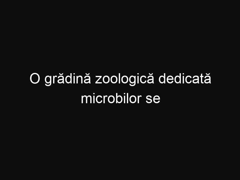 O grădină zoologică dedicată microbilor se deschide la Amsterdam