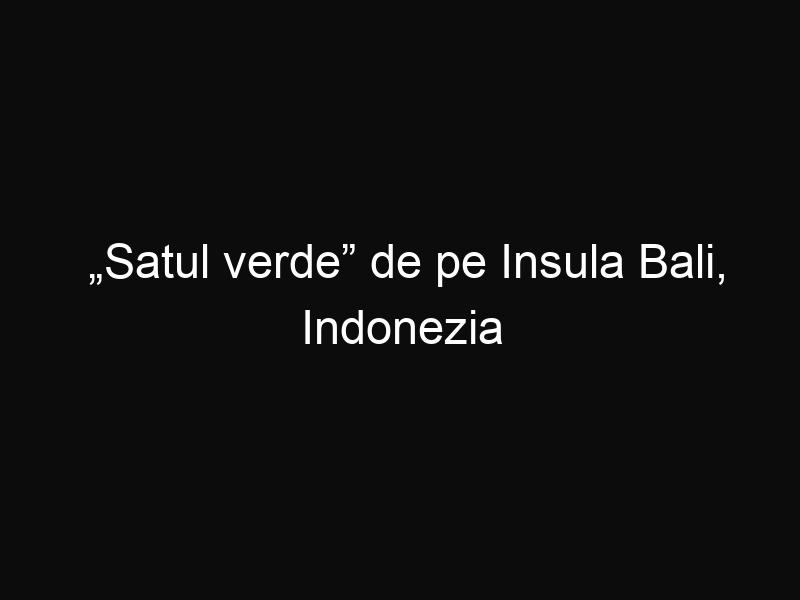 """""""Satul verde"""" de pe Insula Bali, Indonezia"""