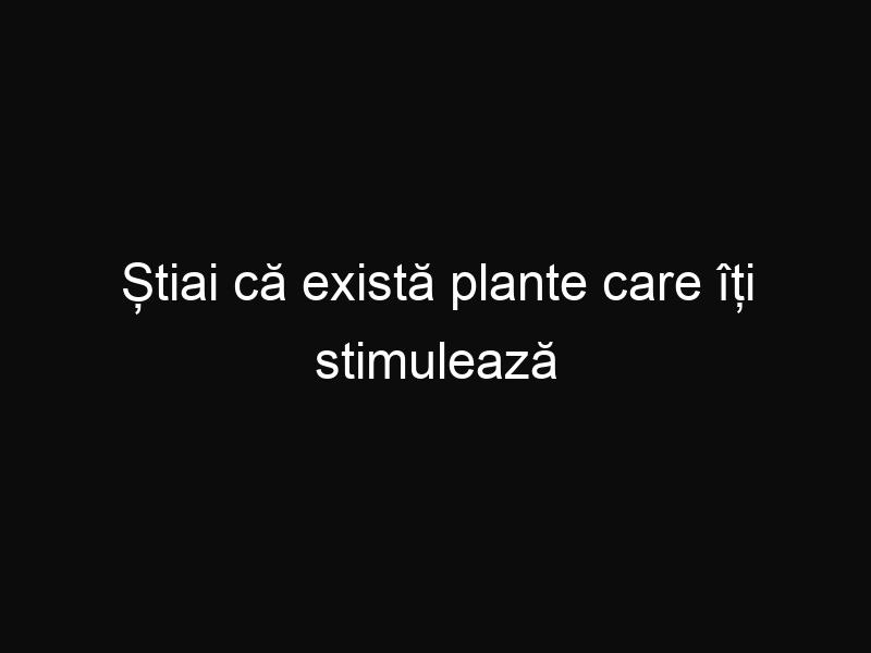 Știai că există plante care îți stimulează creierul?