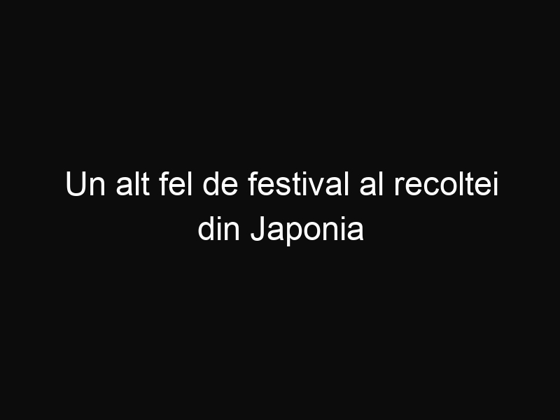 Un alt fel de festival al recoltei din Japonia